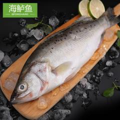 海鲈鱼礼盒活动装(三盒装12条)
